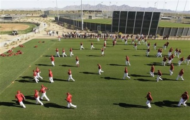 Diamondbacks Spring Baseball